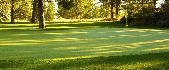 Old Back Nine Golf Homes
