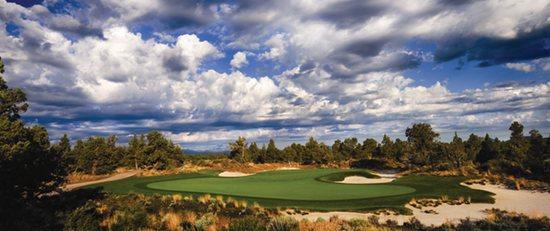 Pronghorn Golf Homes